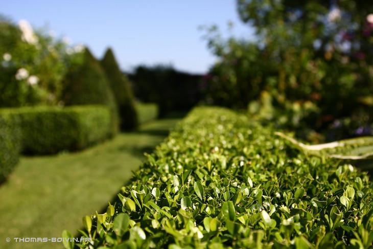 les-jardins-dangelique-by-tboivin-29.jpg