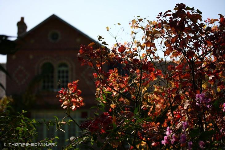les-jardins-dangelique-by-tboivin-48.jpg
